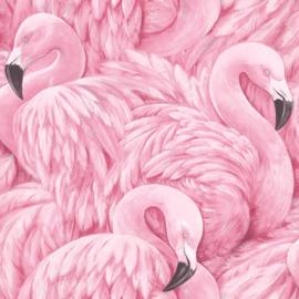 flamingo behang xxx1