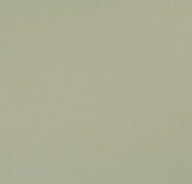 BN Wallcoverings Glamorous 46715 bruin unie vlies