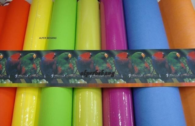dieren papegaai vogels groen rood blauw behangrand zelfklevend