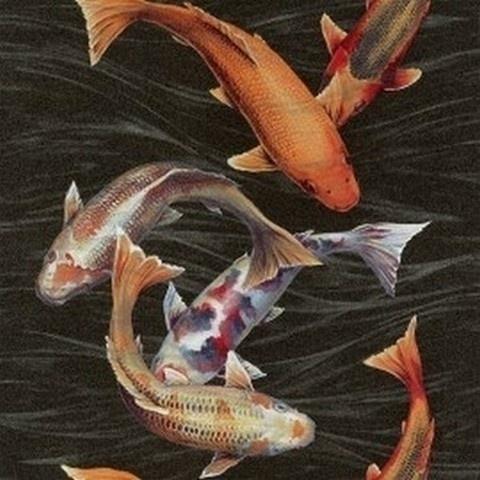 911e065d3c9 Koi karper vissen behang Natural Instinct 781014 | CHINEES JAPANS ...