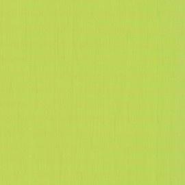 Dutch kids dreamworld 05700-30 groen effen behang