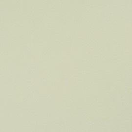 BN Wallcoverings Glamorous 46706 creme unie vlies