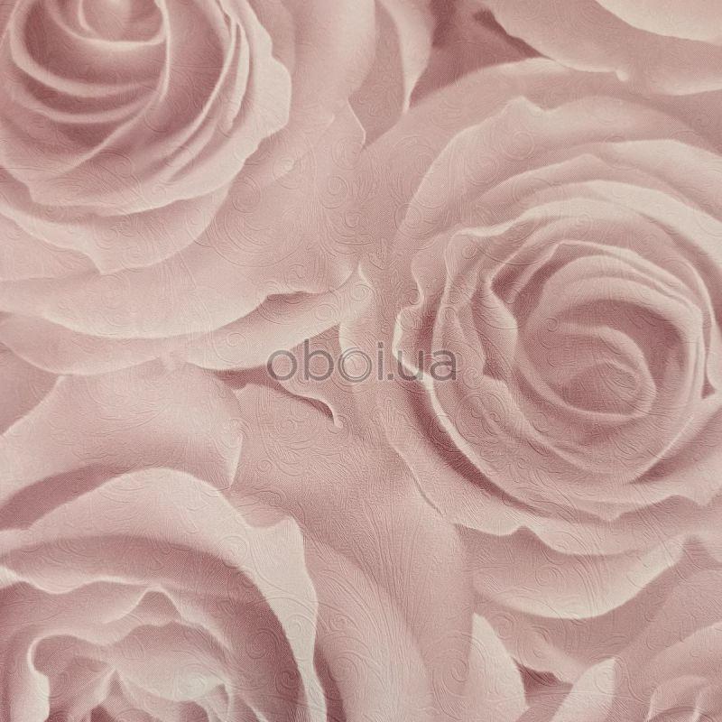 romantische rozen behang 3D effect