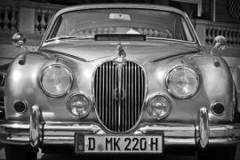 Fotobehang - Zwart wit - Jaguar II
