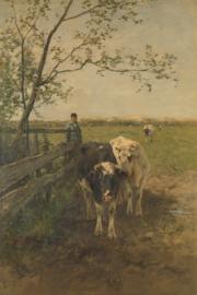 Schilderijbehang - Mauve - De Melkbocht