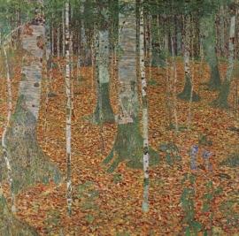 Schilderijbehang - Klimt - Birch Forest
