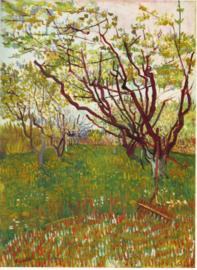 Schilderijbehang - Van Gogh - Cherry Tree