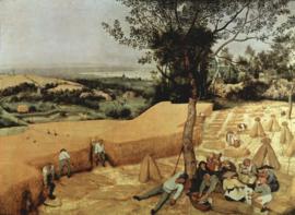 Schilderijbehang - Pieter Bruegel - De Graanoogst / The grain harvest
