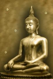 Fotobehang - Buddha 9.