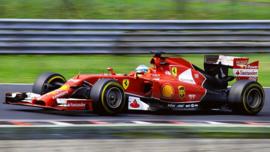 Fotobehang - Fernando Alonso F1 - 2014