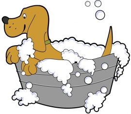 Fotobehang - Kinderkamer - Hond in bad - Dog taking a bath
