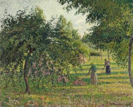Schilderijbehang Pissarro - Appelplukkers - Pommiers et Faneuses