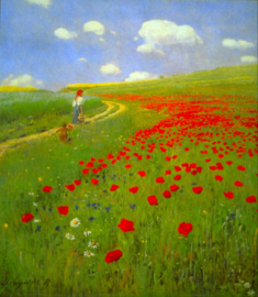 Schilderijbehang - Merse - Field of Poppies