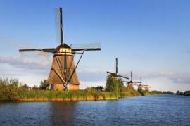 Fotobehang - Kinderdijk - Amsterdam