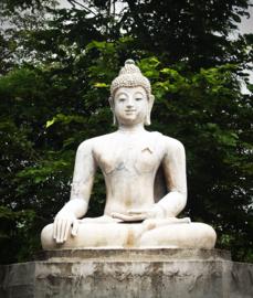 Fotobehang - Buddha - gebed
