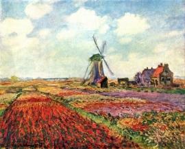 Schilderijbehang - Monet - Tulips of Holland