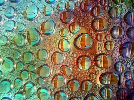Fotobehang - Macrofotografie - Waterdruppels 5 - Drops of Water 5