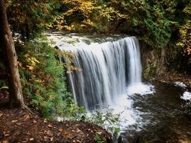Fotobehang - Waterval - Boswaterval - Waterfall in wood