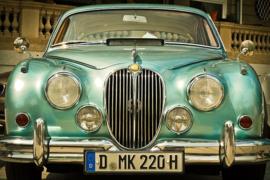 Fotobehang - Jaguar II