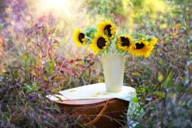 Fotobehang  Zonnebloemen - Sunflowers