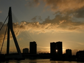 Fotobehang - Rotterdam - Erasmusbrug by night