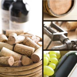 Fotobehang - Wijn ( wijnhandel )