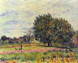 Schilderijbehang - Sisley - Walnootbomen in de zon