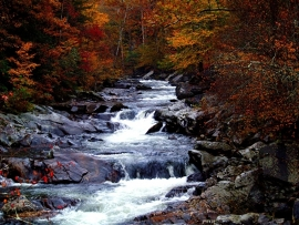 Fotobehang - Waterval - Kronkelende waterval - Meandering waterfall