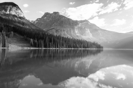 Fotobehang - Zwart wit - Bergen en bos