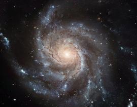 Fotobehang - Kosmos - Messier 101 - Windmolenstelsel - Pinwheel Galaxy