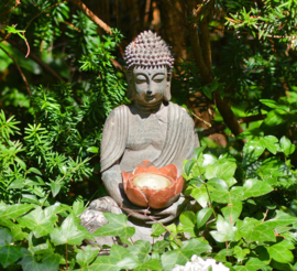 Fotobehang - Buddha in tuin