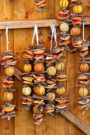 Fotobehang - Keuken - Gedroogde sinaasappelschijven