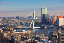 Fotobehang - Rotterdam - Erasmusbrug