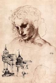 Schilderijbehang - Da Vinci - Jacobus Maior