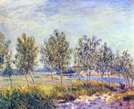 Schilderijbehang - Sisley - Langs weide - By Meadow