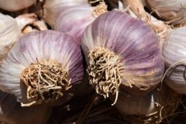 Fotobehang - Eten - Knoflook - Garlic