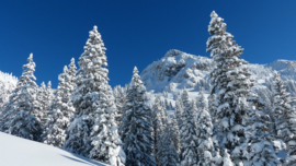 Fotobehang - Bergen en Sneeuw - Fotobehang Bergen in de sneeuw