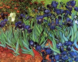 Schilderijbehang - Van Gogh - Irissen
