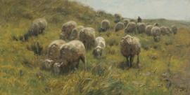 Schilderijbehang - Anton Mauve - Op de duinen