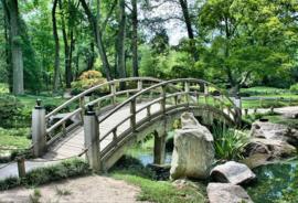 Fotobehang - Tuin - Japanse tuin