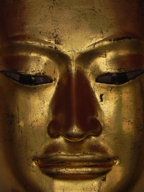 Fotobehang - Wellness - Buddha 7.