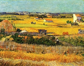 Schilderijbehang - Van Gogh - Harvest at La Crau with Montmajour in the background