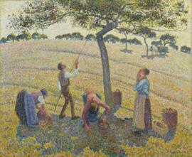 Schilderijbehang Pissarro - Appel oogst - Apple harvest
