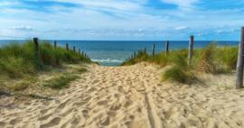 Fotobehang - Noordzee duinen