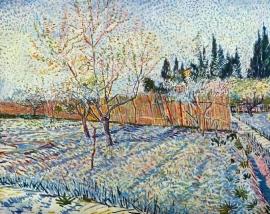Schilderijbehang - Van Gogh - Orchard with Cypress