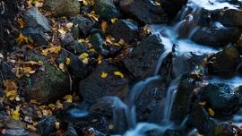 Fotobehang - Waterval - Kleine waterval - Small waterfall