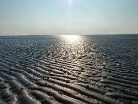 Fotobehang - Zee - Waddenzee