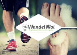 10 gram WandelWol antidruk-wol