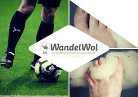 20 gram WandelWol antidruk-wol