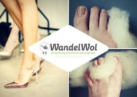 40 gram WandelWol antidruk-wol